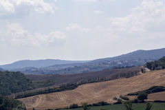 Landscape of val d orcia royalty free stock photos