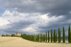 Landscape of Val d'Orcia province. Tuscany, Italy Royalty Free Stock Photography
