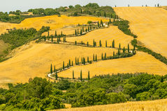 Landscape in Val d'Orcia (Tuscany) Stock Photography