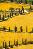 Landscape in Val d'Orcia (Tuscany) Royalty Free Stock Photo
