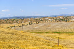 Landscape in Val d'Orcia (Tuscany) Stock Photo