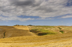 Landscape in Val d'Orcia (Tuscany) Stock Images