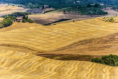 Landscape in Val d'Orcia (Tuscany) Royalty Free Stock Image