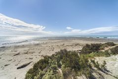 Landscape in the Valdes Peninsula royalty free stock photo