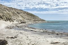 Landscape in the Valdes Peninsula stock photography