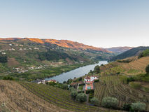 Landscape in Vale do Douro, Portugal Royalty Free Stock Image