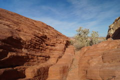 Landscape in Valley of Fire, Nevada Royalty Free Stock Photo