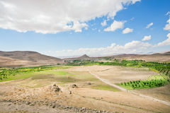 Landscape of the valley of the Middle East with planted trees and mountain range Royalty Free Stock Photography