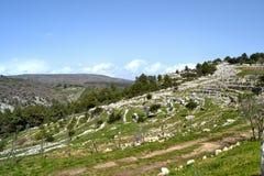 Landscape Sicily Stock Images