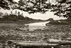 Landscape in Vancouver island. British Columbia. Canada Stock Image