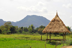 Landscape of vang vieng Royalty Free Stock Photo