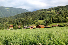 Landscape of vegetation and houses, France Royalty Free Stock Photos