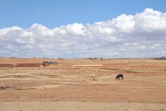 Landscape in the vicinity of Tiahuanaco. Stock Photo