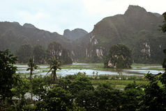 Landscape, Vietnam Stock Photography