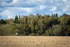 Landscape view of agriculture field with forest and hunting tower in background. royalty free stock photo