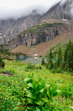 Landscape view of alpine meadow, lake and mountains Royalty Free Stock Photo
