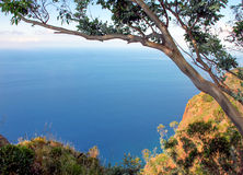 Landscape. View the Atlantic Ocean from Cape Cobe. Island Madeira stock images