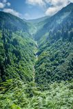 Landscape view of Ayder Plateau in Rize,Turkey. Ayder Valley is popular destination for summer tourism Royalty Free Stock Image