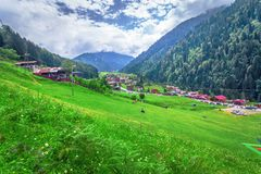 Landscape view of Ayder Plateau in Rize,Turkey. Ayder Valley is popular destination for summer tourism stock photography
