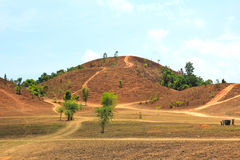 The landscape view of bald mountain or grass mountain in Ranong Stock Photography