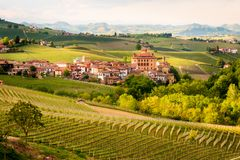 Vineyards of Barolo royalty free stock photos