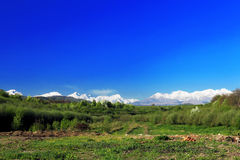 Landscape view of the Caucasus Mountains. Stock Images