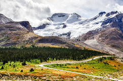 Landscape view of Columbia glacier in Jasper NP, Canada Royalty Free Stock Photos