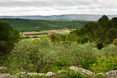 Provence Landscape Royalty Free Stock Photos