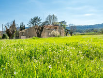 Landscape view of countryside Stock Image