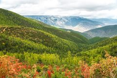 Landscape view in the countryside. Between Shangri-La and Daocheng, China Stock Photo