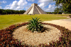 Landscape view of famous Chichen Itza pyramid. With cactus in foreground, Mexico Stock Photos