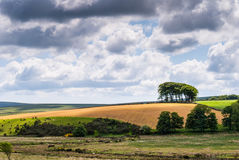 Landscape view of farmlands. Countryside landscape with clouds, Wales, UK Royalty Free Stock Images