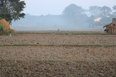 Landscape view of a field in Nepal stock photography