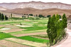 Landscape view of the fields of high Atlas Mountains, Morocco. Landscape view of the fields and mountains of high Atlas, Morocco Royalty Free Stock Image