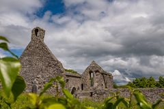 A landscape view through through foliage of the abanoned ruins of Killone Abbey that was built in 1190 and sits on the banks of. The Killone Lake, just outside royalty free stock photo