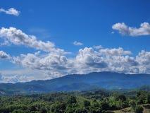 Landscape view of green forest under cloudy blue sky. Landscape view for desktop background with green forest under cloudy blue sky Stock Image