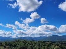 Landscape view of green forest under cloudy blue sky. Landscape view for desktop background with green forest under cloudy blue sky Stock Photo