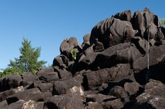 Lava stone formation into the bush in the natural park of curieuse island, Seychelles. Landscape view of the Lava stone formation into the bush in the natural royalty free stock image