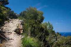 Landscape view Mallorca Royalty Free Stock Images