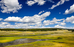 Landscape view of meadows and river in Yellowstone, USA Royalty Free Stock Photo
