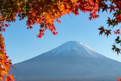 Landscape of view the Mount Fuji and Bright red maple leaf frame. Kawaguchiko In the morning is a tourist attraction of Japan. In a small town royalty free stock photography