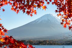 Landscape of view the Mount Fuji and Bright red maple leaf frame. Kawaguchiko In the morning is a tourist attraction of Japan. In a small town stock photo