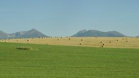 Landscape view of mountain High Tatras, Slovakia. Landscape view of mountain range colorful hills, fields, meadows and foliage, High Tatras, Slovakia royalty free stock image