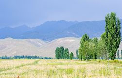 Mountains near Issyk- Kul lake in Kyrgystan during summer season Stock Photography