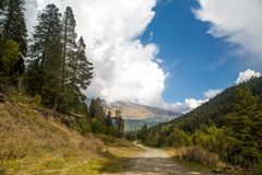 Landscape with a view of the mountains with trees and a road Royalty Free Stock Image
