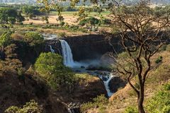 Landscape view near the Blue Nile falls, Tis-Isat Falls Ethiopia, Eastern Africa stock images