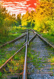 Landscape view of old railways in the autumn evening Royalty Free Stock Photos