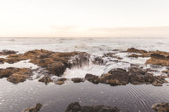 Landscape view on the Oregon coast royalty free stock photography