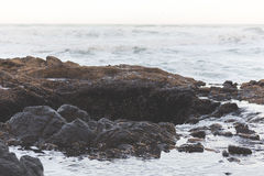 Landscape view on the Oregon coast Royalty Free Stock Photo