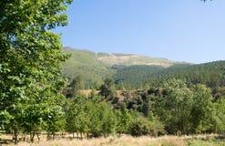 Landscape. A view from a park in Serra da Estrela, Portugal Royalty Free Stock Image
